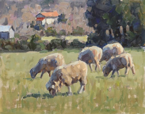 Grazing-In-Hill-Country-2