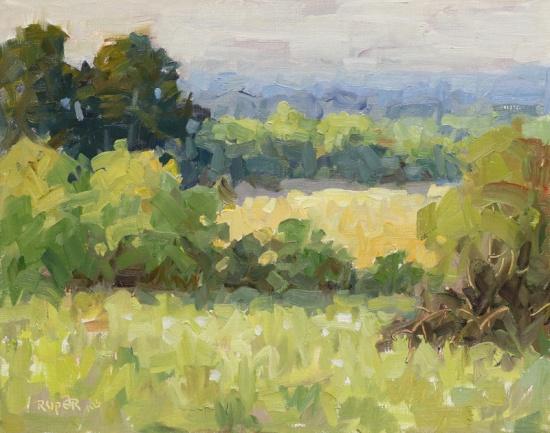 Stuart Roper - Morning Light Over The West Field